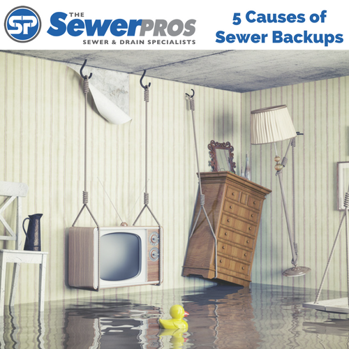 5 Causes of Sewer Backups